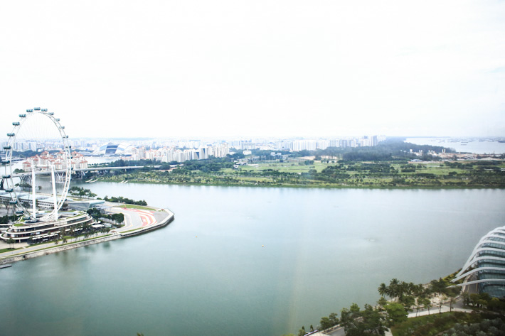 Singapore-Flyer-Gardens-By-Bay