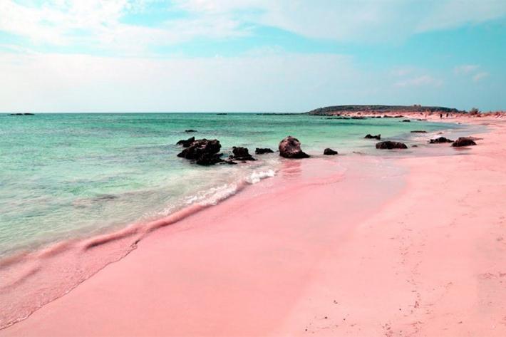 pink-sands-beach