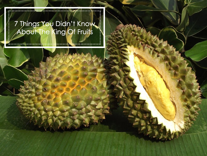 durian-facts