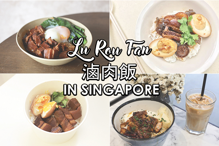 Singapore Lu Rou Fan