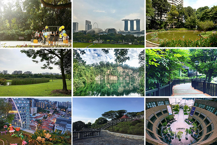 Hidden Green Spaces Collage