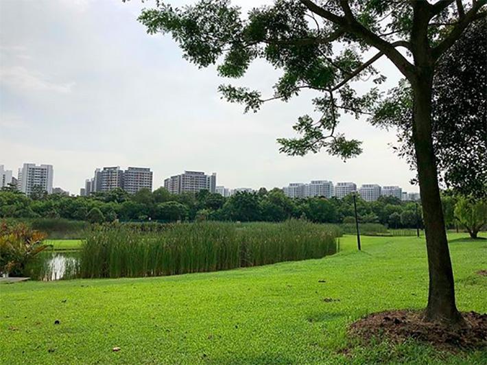 Seng Kang Riverside Park