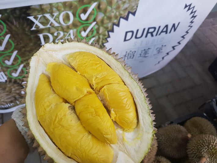 Durian Studio