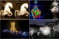 Singapore Night Festival Collage